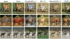 Unsupervised Attention-Guided Image-to-Image Translation