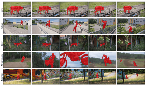 Video object segmentation