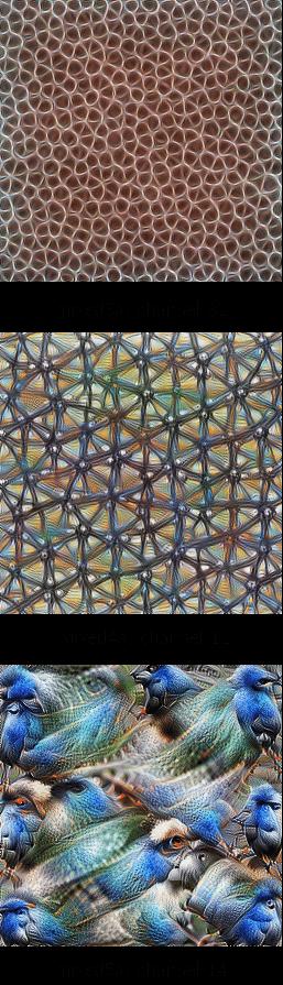 работа сверточной нейронной сети на примере