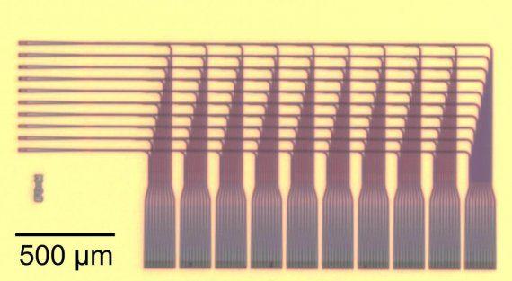 silicon chip