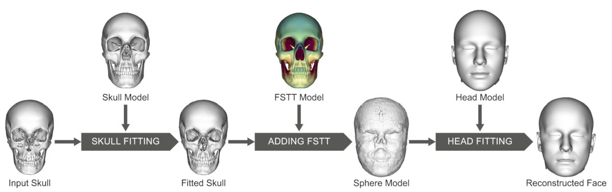 Processing steps of the automatic forensic facial reconstruction.