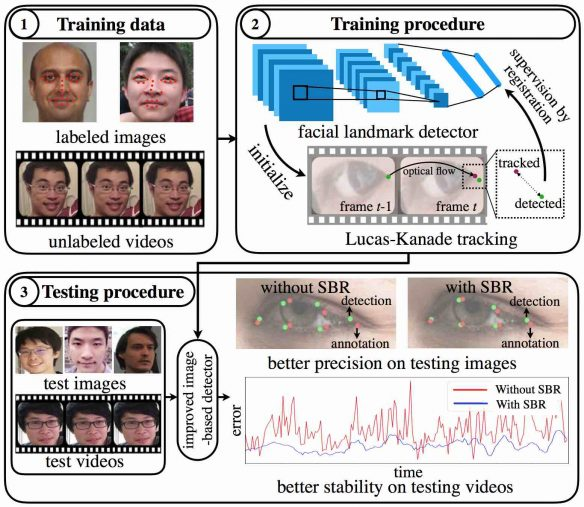 (SBR) framework takes labeled images, and unlabeled video as input to train an image-based facial landmark detector