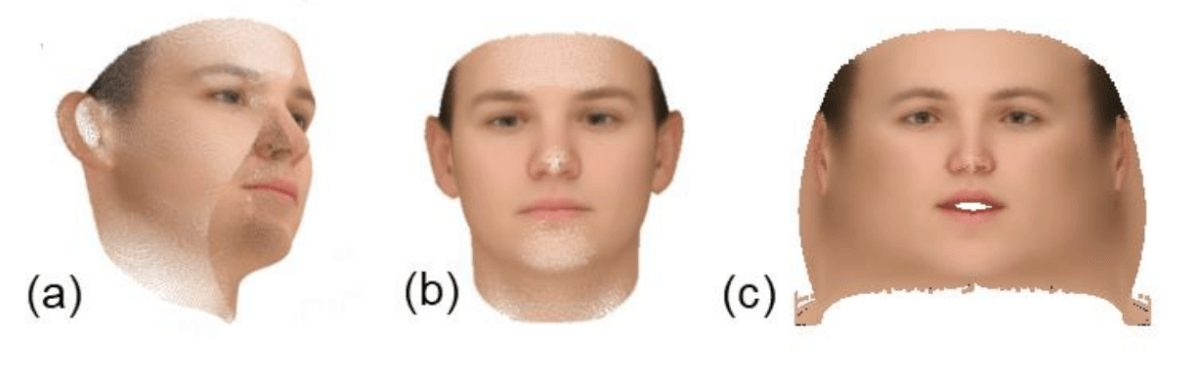 Three albedo representations. (a) Albedo value per vertex, (b) Albedo as a 2D frontal face, (c) UV space 2D unwarped albedo.