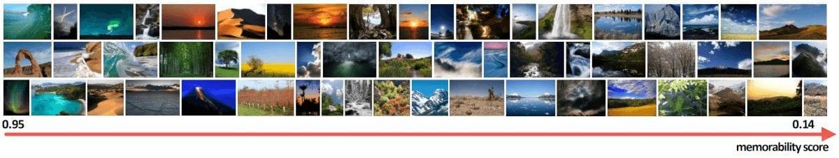 Рис: 1 Примеры фотографий из датасета LNSIM