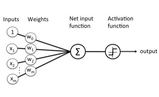 Schematic of Rosenblatt's Perceptron Model