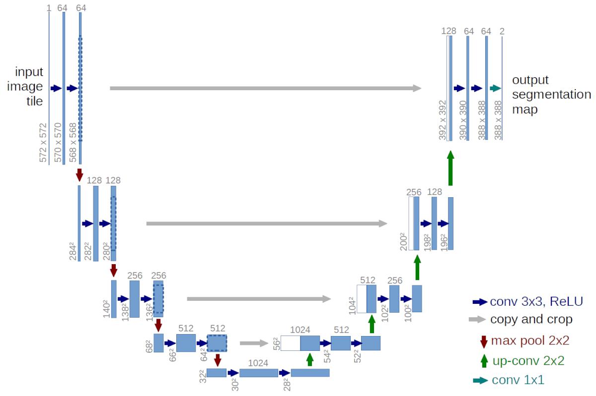u-net architecture