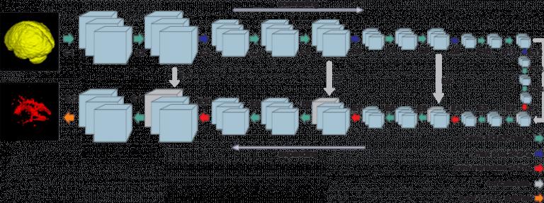 Схема U-Net