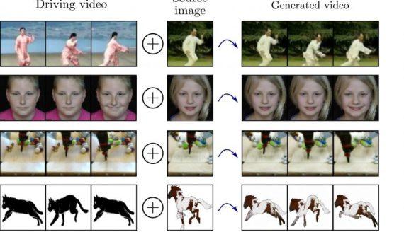 monkey net
