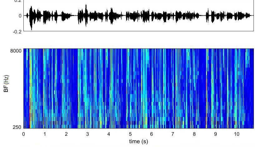 классификатор, имитирующий слуховой нерв