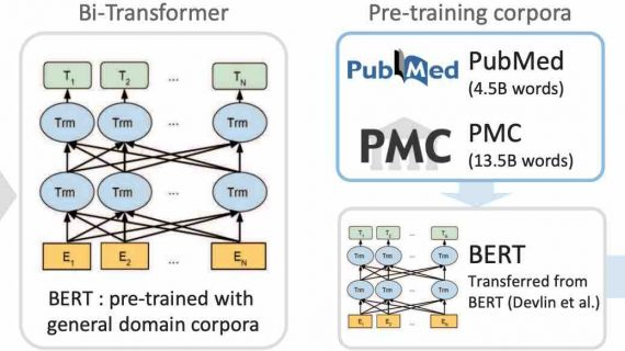 biobert-model-open-source
