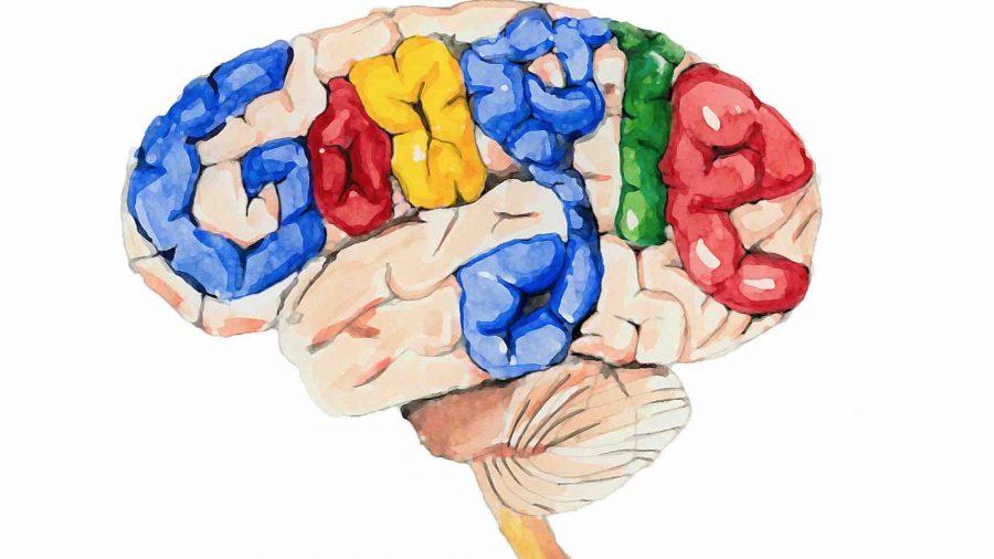 google brain bert ai